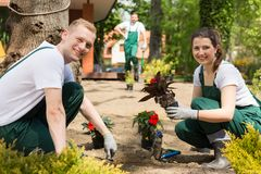 Professional gardening team starting their busy day Stock Photography