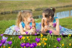 Two equally dressed little sisters lie among the flowers. Two equally dressed little sisters lie on a green lawn among the flowers. Kids hold Easter chocolate royalty free stock images