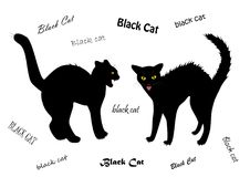 Two evil cats bared teeth isolated on the white background, text BLACK CAT   Stock Image