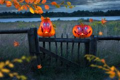 Two evilly laughing orange pumpkins with glowing eyes on wooden fence at night. stock photography