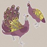 Two exotic birds  on white Stock Photos