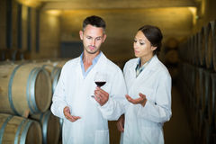 Two expert  looking at wine sample in glass Stock Image