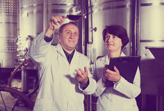 Two experts in winery Stock Photos