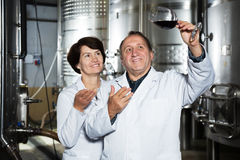 Two experts in winery Stock Photo