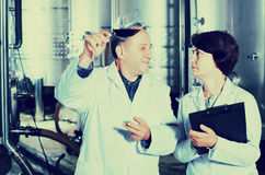 Two experts in winery Royalty Free Stock Photo