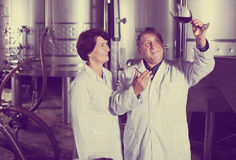 Two experts in winery Stock Images