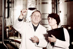 Two experts in winery Royalty Free Stock Photos