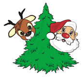 Two faces peek up from tree. Face of santa claus and deer stick out from green christmas tree Stock Images