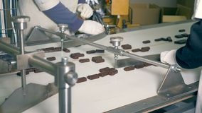Two factory workers are sorting chocolate sweets. 4K stock footage