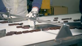 Two factory workers are sorting chocolate sweets. Lots of chocolate sweets are moving forward the conveyor belt and two factory workers are sorting it stock footage