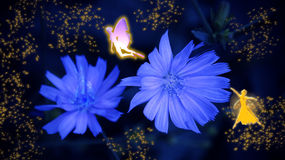 Two fairies and blue flowers in the fairy glitter Stock Photo