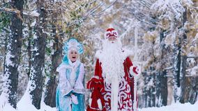 Two fairy-tale characters enjoying the time in snowy forest stock footage