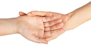 Two famale hands with wedding rings Stock Photos