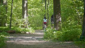 Two famale walk along the path to the thicket of the Park, summer day, rear view. Telephoto shot stock footage