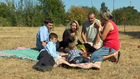 Two families with children at a picnic stock video
