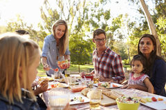 Two families having a picnic in a park, woman serving. Two families having a picnic in a park, women serving Royalty Free Stock Photos