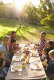 Two families having picnic at a table in a park, vertical Stock Image