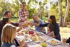 Two families making a toast at picnic at a table in a park Royalty Free Stock Images