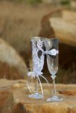 Two fancy wedding goblets glasses on tender background Stock Photos