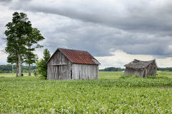 Two Farm Sheds In Ohio Royalty Free Stock Images