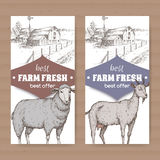 Two farm shop labels with farmhouse, barn, sheep and goat on white. Royalty Free Stock Photography