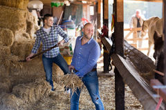 Two farmers with pitchforks Stock Photo