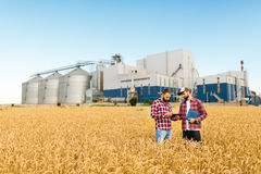 Two farmers stand in a wheat field with tablet. Agronomists discuss harvest and crops among ears of wheat with grain. Two farmers are standing in a wheat field Stock Photo