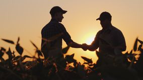 Two farmers talk on the field, then shake hands. Use a tablet. 4k video royalty free stock photo