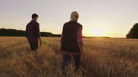 Two farmers are walking along the wheat field towards the setting sun. In harmony with nature