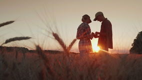 Two farmers are working in the wheat field at sunset. They use a tablet, communicate. In the foreground, spikelets of