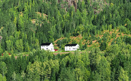 Farmhouses on hillside Stock Images