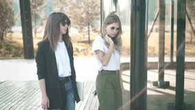 Two beautiful fashion bloggers discussing trends and walking in summer park. Two fashion bloggers, blonde and brown haired, in sunglasses and smart casual stock video