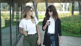 Two young and smart fashion bloggers discussing trends walking in summer park. Two fashion bloggers, blonde and brown haired, in sunglasses and smart casual stock video footage