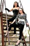 Two fashion girls royalty free stock photo