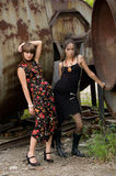 Two fashion girls Royalty Free Stock Images