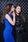 Two fashion girls Royalty Free Stock Image