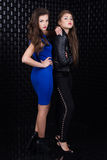 Two fashion girls Stock Images