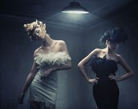 Free Two Fashion Ladies Stock Photography - 17343152