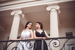 Two fashion ladies Royalty Free Stock Image