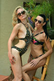 Two fashion models in designers swimsuit Royalty Free Stock Image