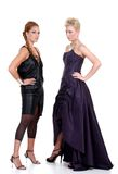 Two fashion models posing Stock Photo