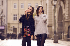 Two fashion models posing Royalty Free Stock Photography