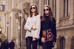 Two fashion models posing Royalty Free Stock Image