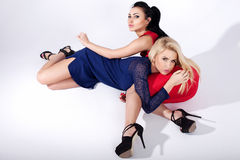 Two fashionable girls posing. Royalty Free Stock Photos
