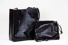 Fashionable women bag. Two fashionable women bags with texture Stock Photography