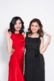 Two fashionable women in nice dresses standing together and havi Royalty Free Stock Photos
