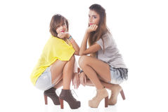 Two Fashionable Women Royalty Free Stock Photo