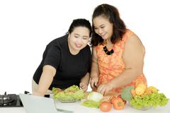 Two fat women using a laptop for cooking. Picture of two fat women using a laptop while cooking in the studio,  on white background Stock Images