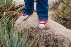 Two feet on a rock Stock Photos