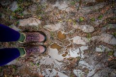 Two feet stading on a muddy, wet path stock photos